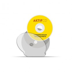 300 cd Sérigraphie couleur shell cd