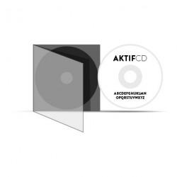 25 CD Sérigraphie Texte Boitier Slim CD