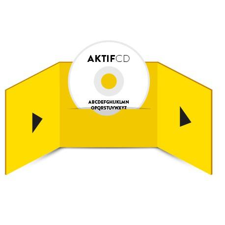 10 cd Sérigraphie Texte Boitier digifile 3 volets 1 CD