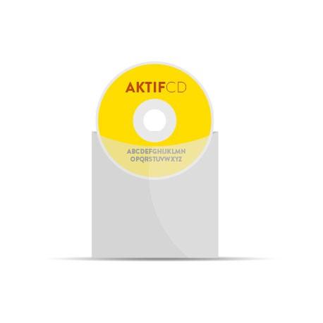 100 CD Sérigraphie Couleur Pochette Plastique