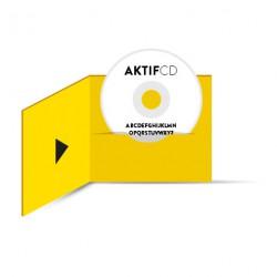 100 cd Sérigraphie Texte Boitier digifile 2 volets