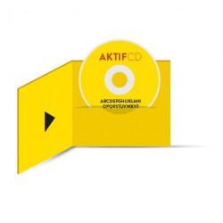 50 dvd Sérigraphie couleurs Boitier digifile 2 volets