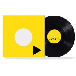 Vinyle 33 Tours 12 Pouces discobag